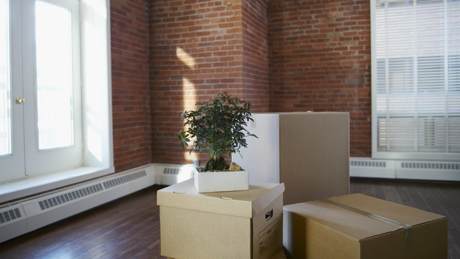 moving-boxes-real-estate